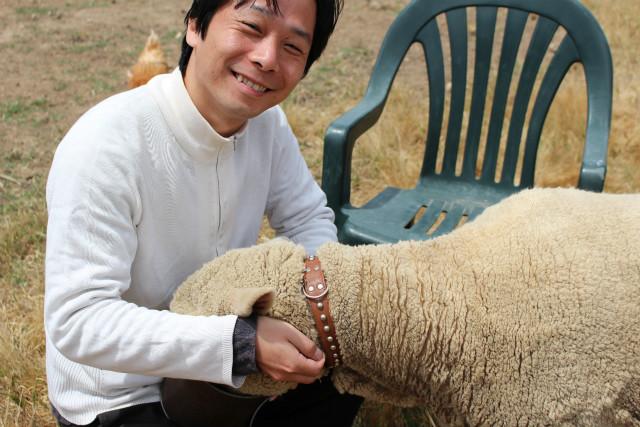 羊を触らせてもらいました